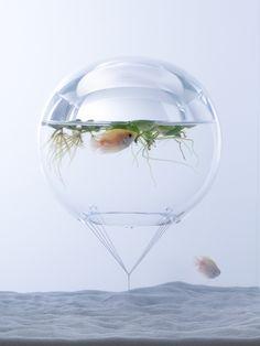 Sculptural Fish Tanks By Misawa Design Institute – iGNANT.de
