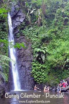 Explore Curug Cilember in Puncak Pass, Bogor regency. A bit hiking in a forest to find seven waterfalls and a butterfly garden :) | #ExploreSunda #CurugCilember #PuncakPass Famous Waterfalls, Beautiful Waterfalls, Family Holiday Destinations, Top Destinations, Butterfly Live, Bogor, Park City, Regency, Scenery