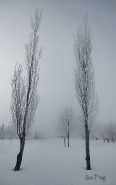 Ice Fog in Saskatchewan