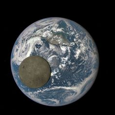 The Moon passing in front of Earth. The pictures were captures by NASA's Deep Space Climate Observatory (DSCOVR) satellite, drifting a million miles away. The images show the far side of the Moon which is never seen from the Earth. Earth And Space, Nasa Photos, Nasa Images, Moon Images, Space Photos, Space Images, Dark Side Of Moon, Flat Earth, Our Solar System