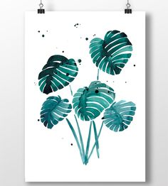 """Print of a beutiful Monstera plant.  It is printed on 250 g. quality paper  Frame not included  Signed by the artist and shipped in a protective card tube  Size 29,7 x 42 cm (A3)  Marenberg is a small design studio established in Copenhagen by illustrator Maria Klingenberg.  <b>Website</b> <a href=""""http://www.marenberg.dk"""" target=""""_top"""">Marenberg</a> <b>Follow me on</b> <a href=""""http://www.facebook.com/marenberg.dk"""" target=""""_top"""">Facebook</a>"""