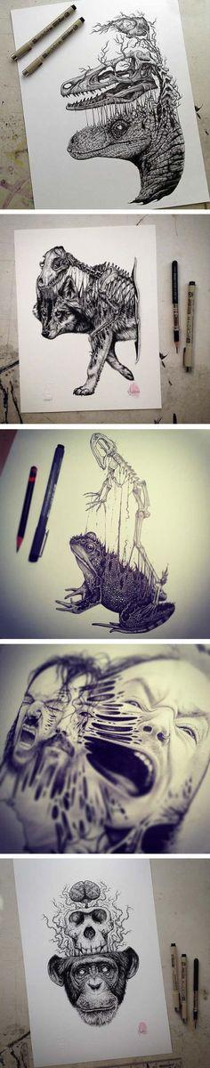 Animals Leave Their Skeletons Behind