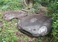 A pair of Jaguar's Type E
