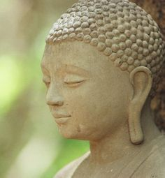 You will not be punished for your anger, but by your anger - Buddha