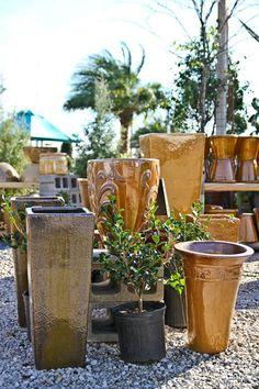 The Plant Gallery Desert Collection Landscape Design New Orleans Pots