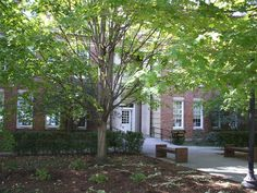 Cookeville, TN : Tennessee Tech: College of Education