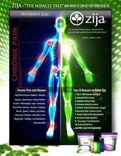 Give Your Body The Proper Nutrition It  Needs!! Did you know that 539 Chemical Activities take place in the human body when you consume Zija's Cell Ready, Enzymatically ALIVE SuperMix, SmartMix or XM+ Moringa Drink...   www.moringa247.myzija.com
