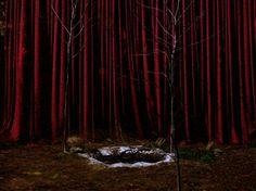 Twin Peaks: The Black Lodge
