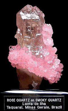 Quartz: SiO2. Note the exceptional transparency of the rose quartz. Minas Gerais, Brazil