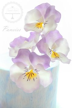 Feb-20-Mas-Pansies.jpg (1200×1800)
