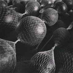 Cocos / Coconuts / Kokosnüsse #bnw #pattern #learnspanish #learningspanish #deutschlernen #lernendeutsch #learningenglish #learnenglish #español #fruits #vegetables #natur Coconut, Instagram, Learn German, Nature
