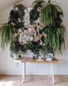 "9,520 Likes, 74 Comments - Urban Jungle Bloggers™ (@urbanjungleblog) on Instagram: ""Glamorous fern installation at @therubystreet in LA by @zofeeagenota #urbanjunglebloggers"""