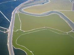 PROPEL STEPS   Eco-Preservation : Salt evaporation ponds