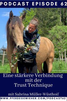 """Pferde Podcast - In dieser Episode des Pferdegwieher Podcasts erklärt Sabrina Müller-Wüsthoff wie man mithilfe der Trust-Technique eine stärkere Verbindung zum Pferd aufbauen kann. Ihr Motto lautet """"Vom Kopf ins Herz"""". Die Trust-Technique eignet sich für alle Pferde, aber gerade """"Problemepferde"""" oder traumatisierte Pferd können von der Methode profitieren. #trusttechnique #sabrinaloveshorses #pferdegewieher #problempferd Stark, Motto, Horses, Animals, Horse Feed, Social Networks, Horseback Riding, Heart, Round Round"""