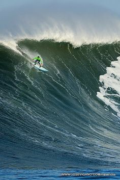 Maverick's Surf Competition