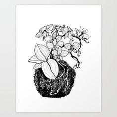 Orchid kokedama Nr. 1 Art print by Kriszti Balla #art #print #krisztiballa #society6 #illustration #botanical #qreenisqueen #orchid #kokedama #orchidkokedama #bw #blackandwhite
