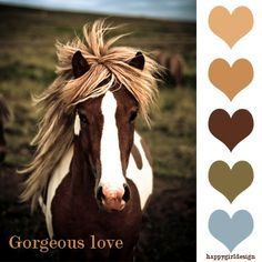 Horses are such beautiful creatures All The Pretty Horses, Beautiful Horses, Animals Beautiful, He's Beautiful, Cheval Pie, Farm Animals, Cute Animals, Wild Animals, All About Horses