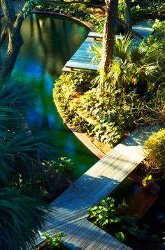 Boardwalk Over Garden Pond, Hilton Head Island, South Carolina