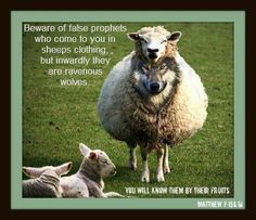 Beware of false prophets who come to you in sheeps clothing, but inwardly, they are ravenous wolves.  You will know them by their fruits.  Matthew 7:15&16
