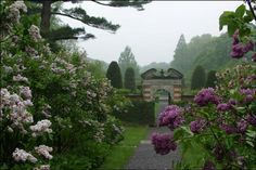 There are over 200 acres of gardens, formal landscapes, ponds, and woods. One of the most beautiful sights is the Lilac Walk, which is filled with more than 250 lilac shrubs of 30 varieties. See more at Old Westbury Gardens » - Veranda.com