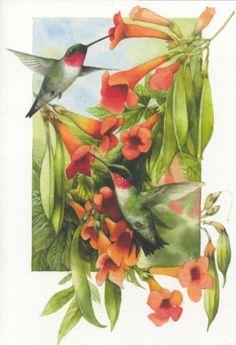 hummingbird art by Marjolein Bastin
