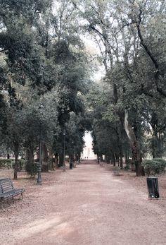 Rome borghese