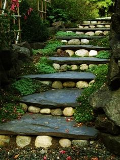 Stone garden path, staircase with green.