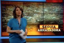 El Informe: Productores Pierden Miles De Millones Por Sequía En Región Sur #Video