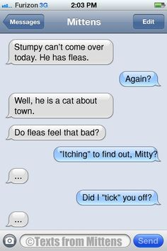 Texts from Mittens - NEW Daily Mittens: The Fleas Edition More Mittens...