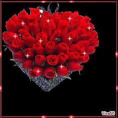 Gorgeous Bouquet of Red Roses gif ~ Collection of pictures, click the picture to see them. Roses Gif, Flowers Gif, Red Flowers, Beautiful Love Pictures, Beautiful Gif, Romantic Pictures, Beautiful Rose Flowers, Beautiful Flowers, Hearts And Roses