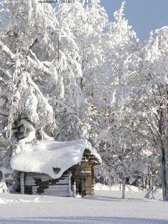 Puolanka photo by Yrjö Huusko Winter Cabin, Winter Love, Snow Cabin, Winter White, Cozy Winter, Snow White, Winter Scenery, Snowy Day, Snowy Woods