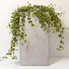 Woodgrain Fiberstone Cube Planter