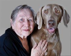Support Furry Friends During National Animal Shelter Appreciation Week   Sunrise Senior Living