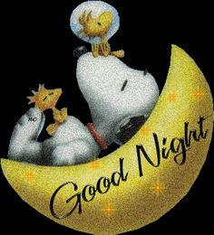 Snoopy-To all that share this board may the lord keep each of you and your families through the night and bless your tomorrows I ask this in Christ name amen.(BLESS)