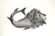 Löwe-Fisch TBB Meer H005