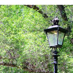 Regina Gaslamp, Wascana Regina | Subject to Copyright