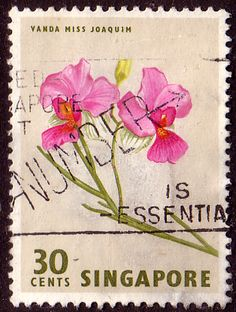 Singapore 1962 Flower Orchid Fine Used                    SG 73 Scott 65    Other Asian and British Commonwealth Stamps HERE!