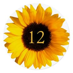 Sunflower Wedding Reception Big Sunflower Round Wedding Table Number Card