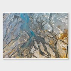 Godley River - Gold Dust Photographic Print by Emma Willetts - endemicworld