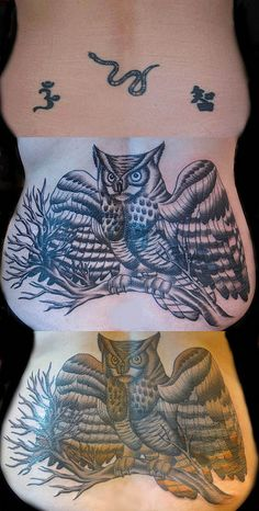 Owl Cover Up Tattoo by Suzanna Fisher
