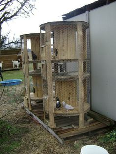 DIY ANIMAL CAGES OR BACKYARD CHICKENS recycle old wooden electrical wire rolls