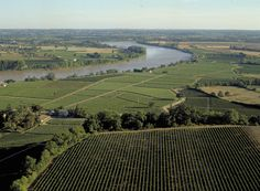 See Decanter Tours' guide to Sundays in Margaux.