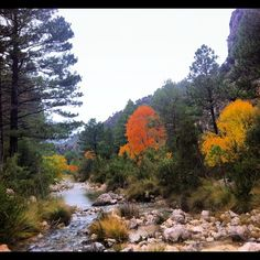 Otoño #matarranya20 #conalma #sienteteruel colores luz especial - taken by @javisolfa - via http://instagramm.in
