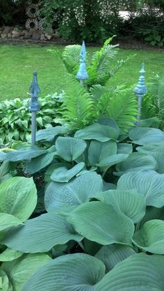 love these finials popping out of the hosta garden