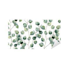 4534d5d61753 Håndmalet mønster med grene og blade af sølv dollar eukalyptus isoleret på hvid  baggrund. Til design eller baggrund Personlige selvklæbende tapet • Pixers®  ...