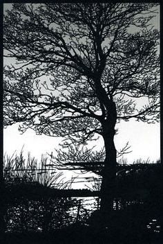 John Speights Original Papercut Art - Finest Papercuts