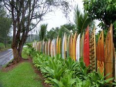 Surfboard fence, Haiku, Maui - this place was amazing. It is a surfboard recycling center - people just come by and drop off their old boards for the fence. Very cool to see. Dump A Day, Surfboard, Curb Appeal, Fences, Equality, Garden Tools, Surfing, 21st, Picket Fences