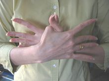 The Garuda mudra is used to heighten intuition and enable communication with the spirit world. How to form the Garuda mudra: Place right palm over the top of left hand, spreading fingers apart and crossing thumbs. Yoga Tips, Photo Galleries, Meditation, Hands, Gallery, Acro, Astronaut, Intuition, Mud
