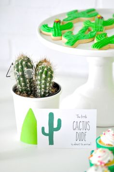 DIY Little Cactus Du