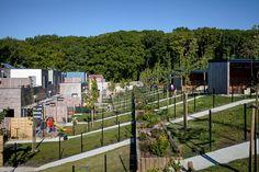14 maison locatives _ QE & Passif _ quartier Henri Dunant, Le Havre (76) | atelierphilippemadec